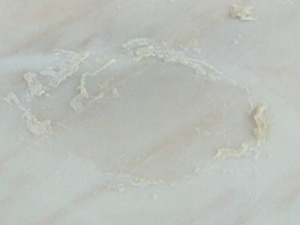 Poultice Stain